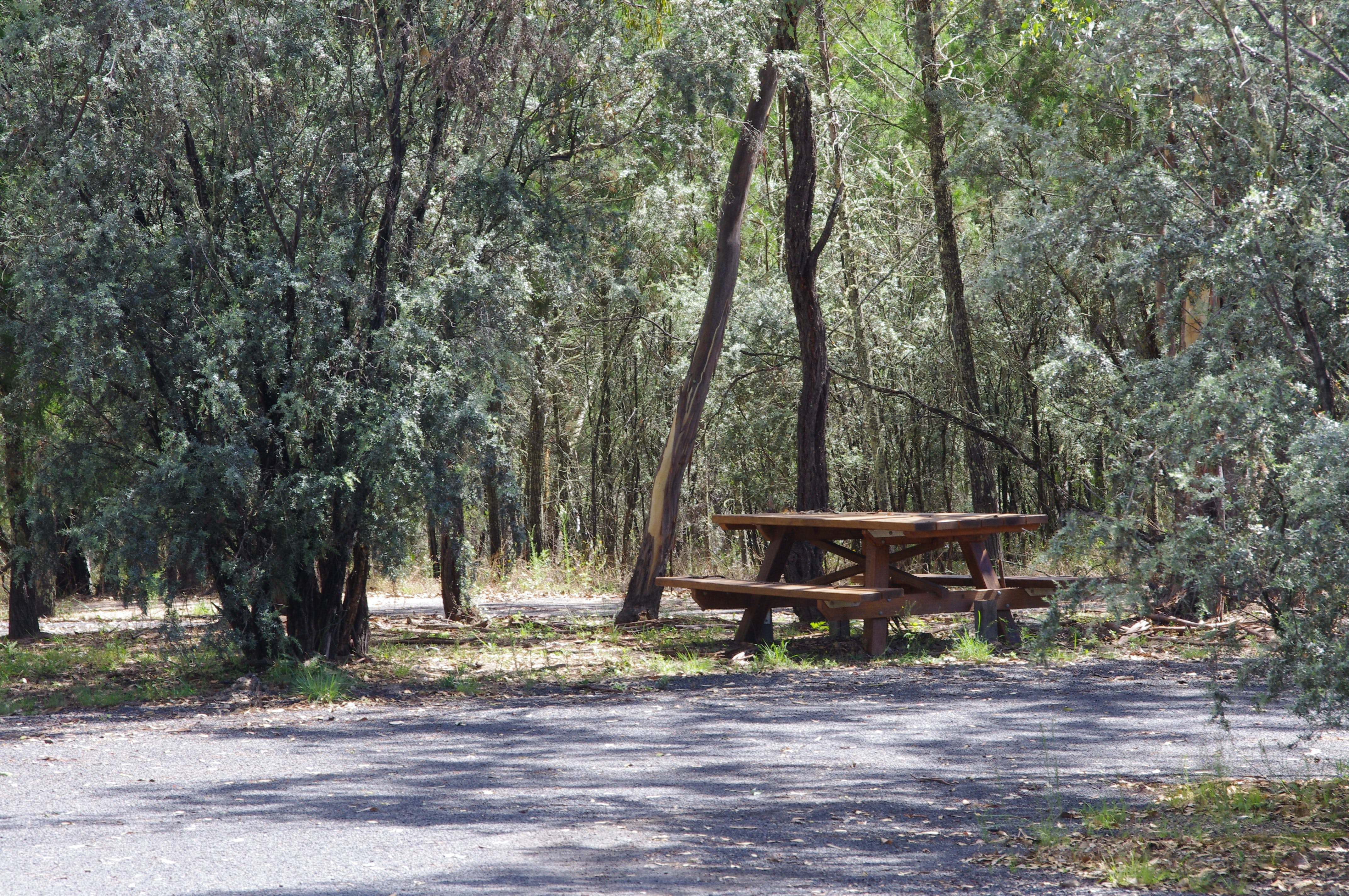 Goonoowigall State Conservation Area - Accommodation Georgetown