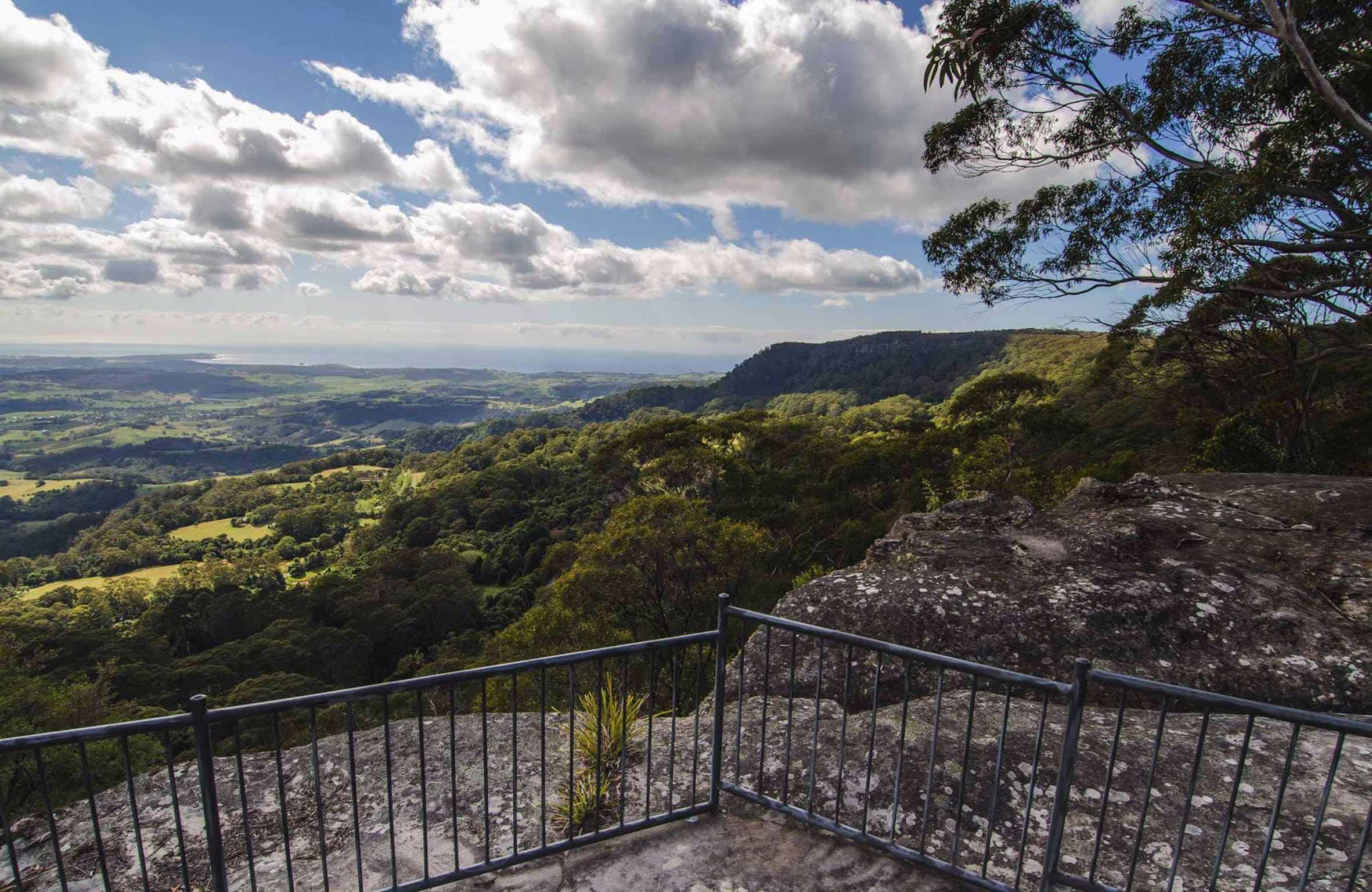 Illawarra Lookout Walking Track - Accommodation Georgetown