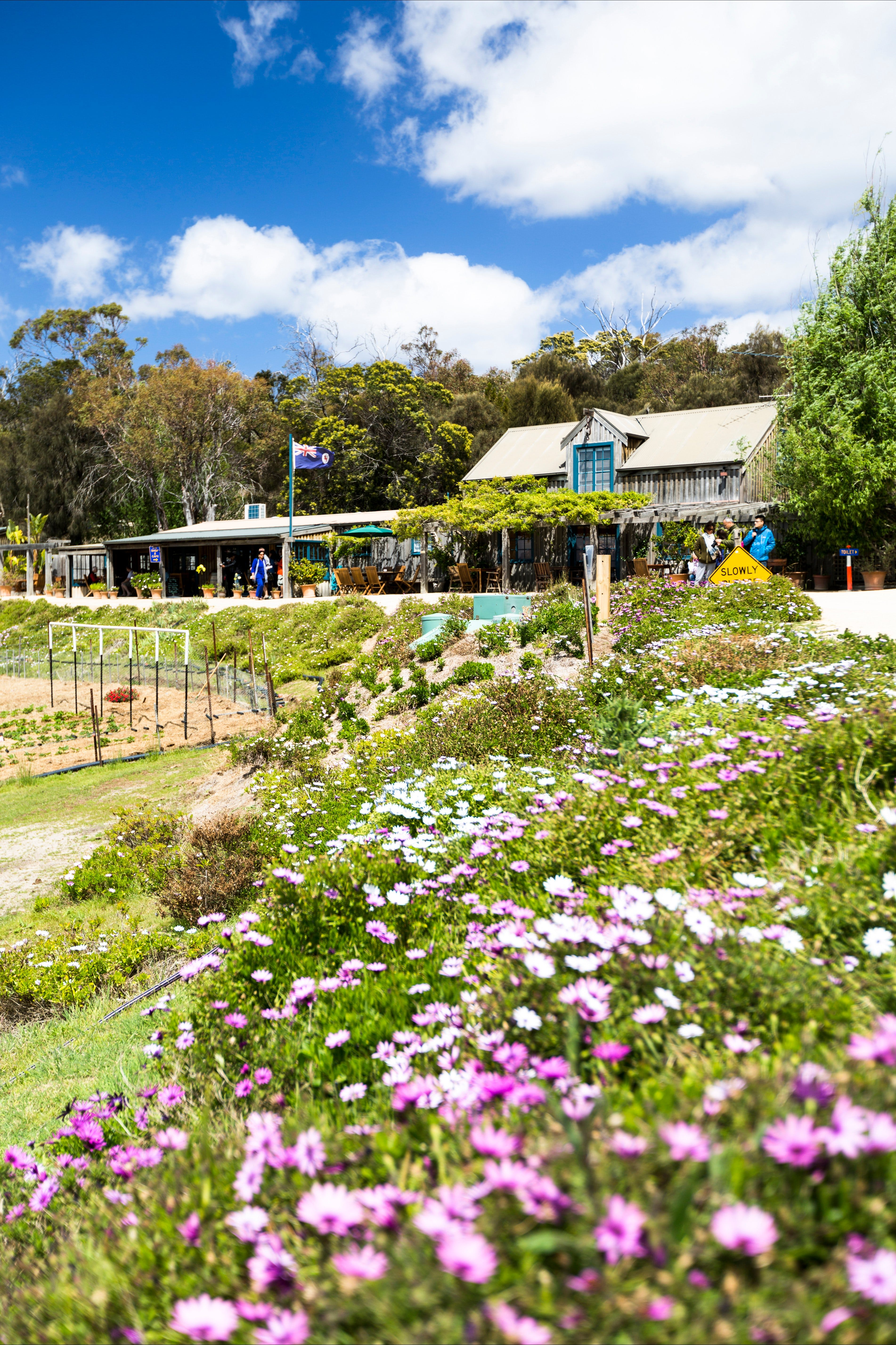 Kate's Berry Farm - Accommodation Georgetown