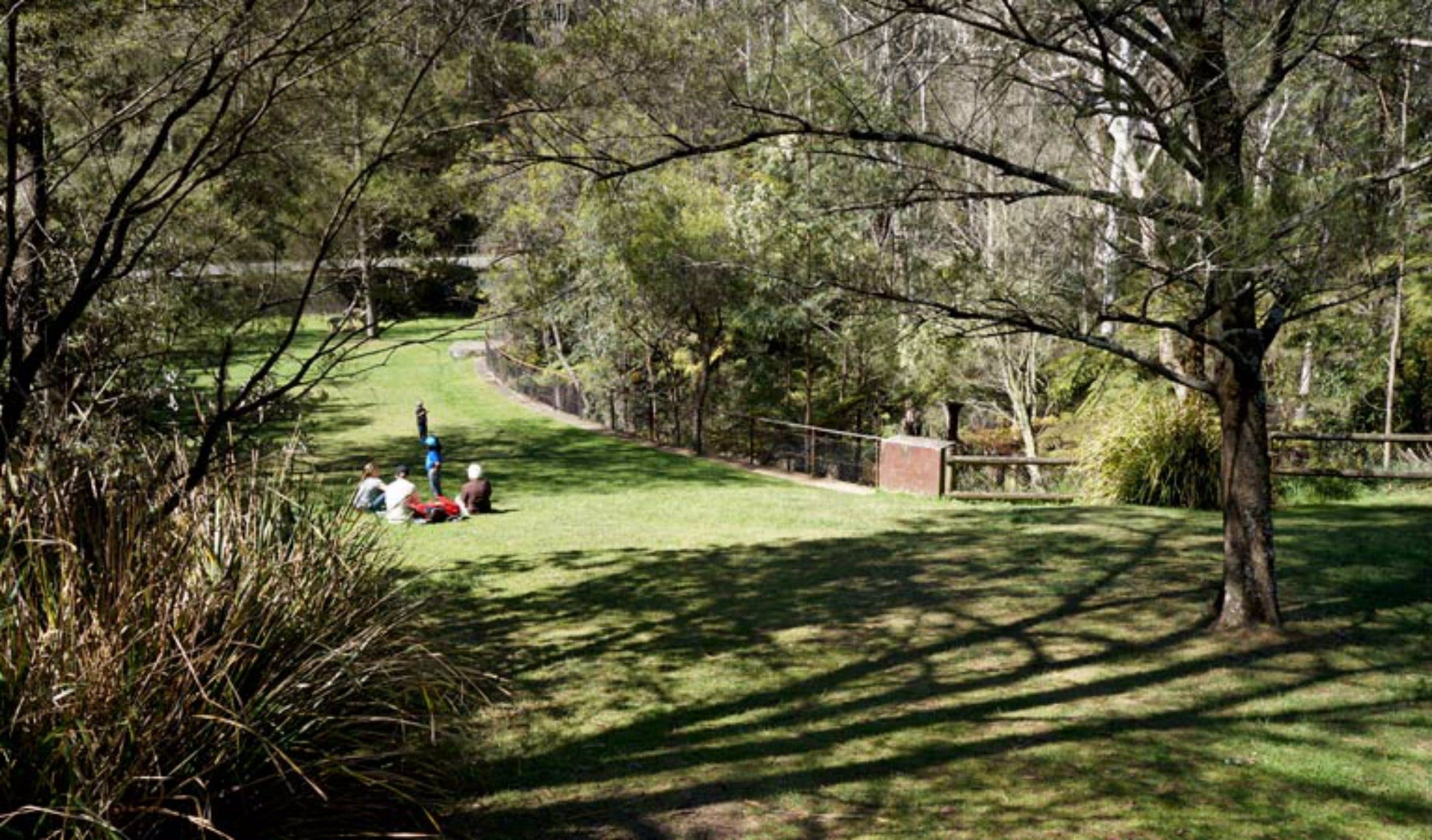 Leura Cascades picnic area - Accommodation Georgetown