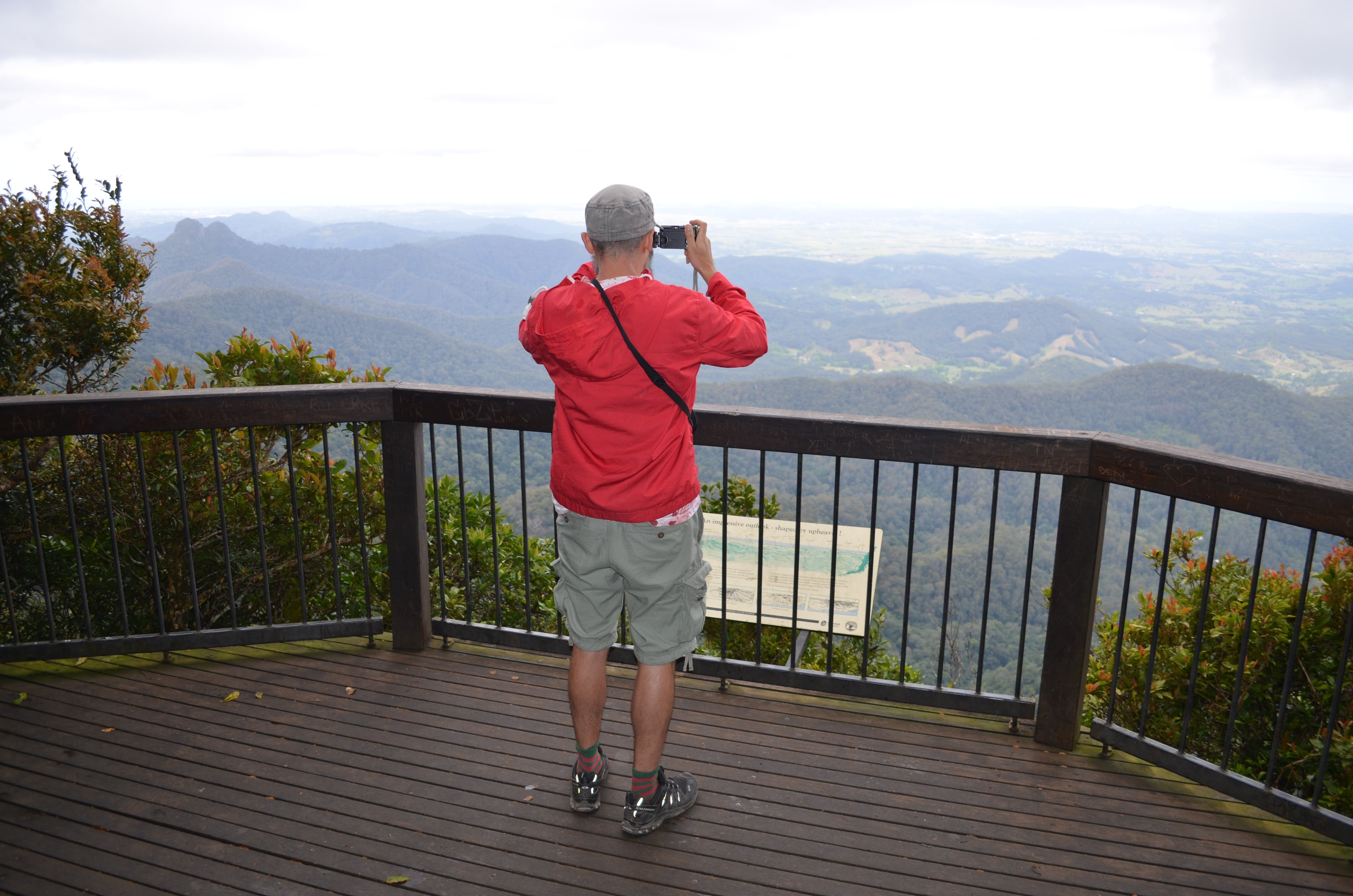 Best of All lookout track Springbrook National Park - Accommodation Georgetown