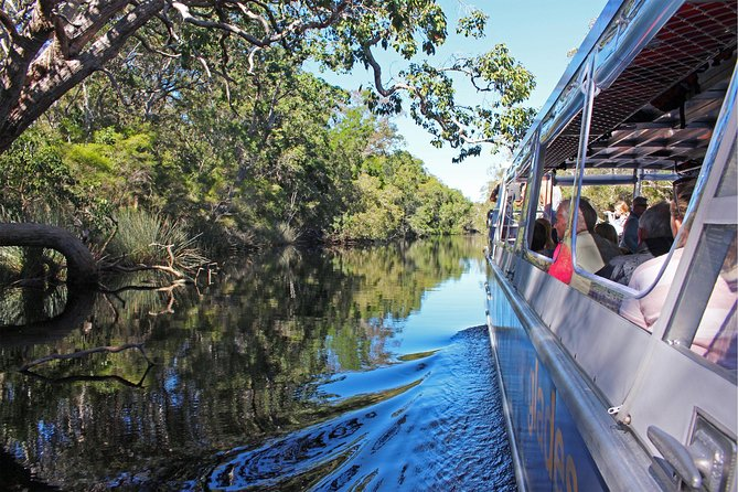 Serenity Cruise to Australia's Everglades - Accommodation Georgetown