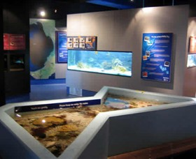 Marine and Freshwater Discovery Centre - Accommodation Georgetown