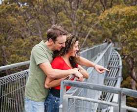 Valley of the Giants Tree Top Walk - Accommodation Georgetown