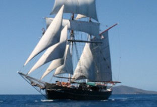 Australian Tallship Cruises - Accommodation Georgetown