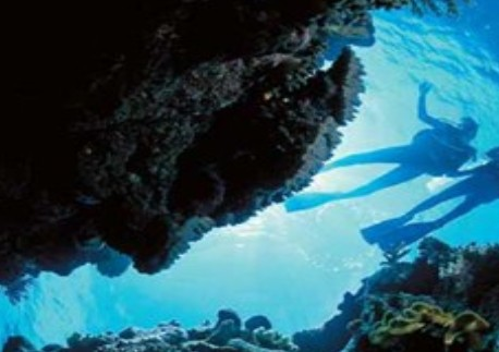 Deep Sea Divers Den - Accommodation Georgetown