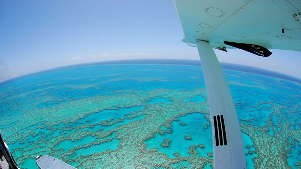 Air Whitsunday Day Tours - Accommodation Georgetown