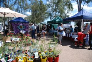 Fernvale Country Markets - Accommodation Georgetown