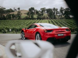 The Prancing Horse Supercar Drive Day Experience - Melbourne Yarra Valley - Accommodation Georgetown