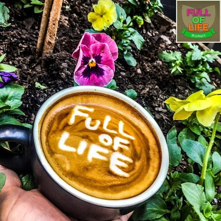 Full of Life Organics - Accommodation Georgetown