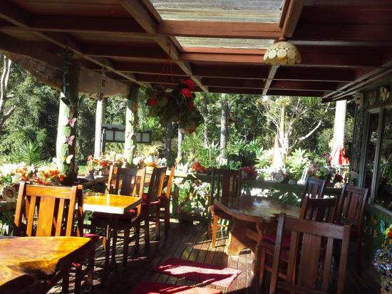 Suzannes's Hideaway Cafe - Accommodation Georgetown