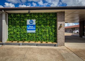 Best Western Endeavour Motel - Accommodation Georgetown