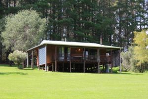 Hawke Brook Chalets - Accommodation Georgetown