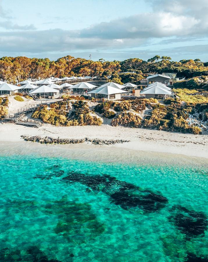 Discovery Rottnest Island - Accommodation Georgetown