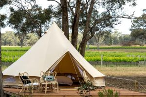 Balgownie Estate Winery Retreat  Restaurant - Accommodation Georgetown